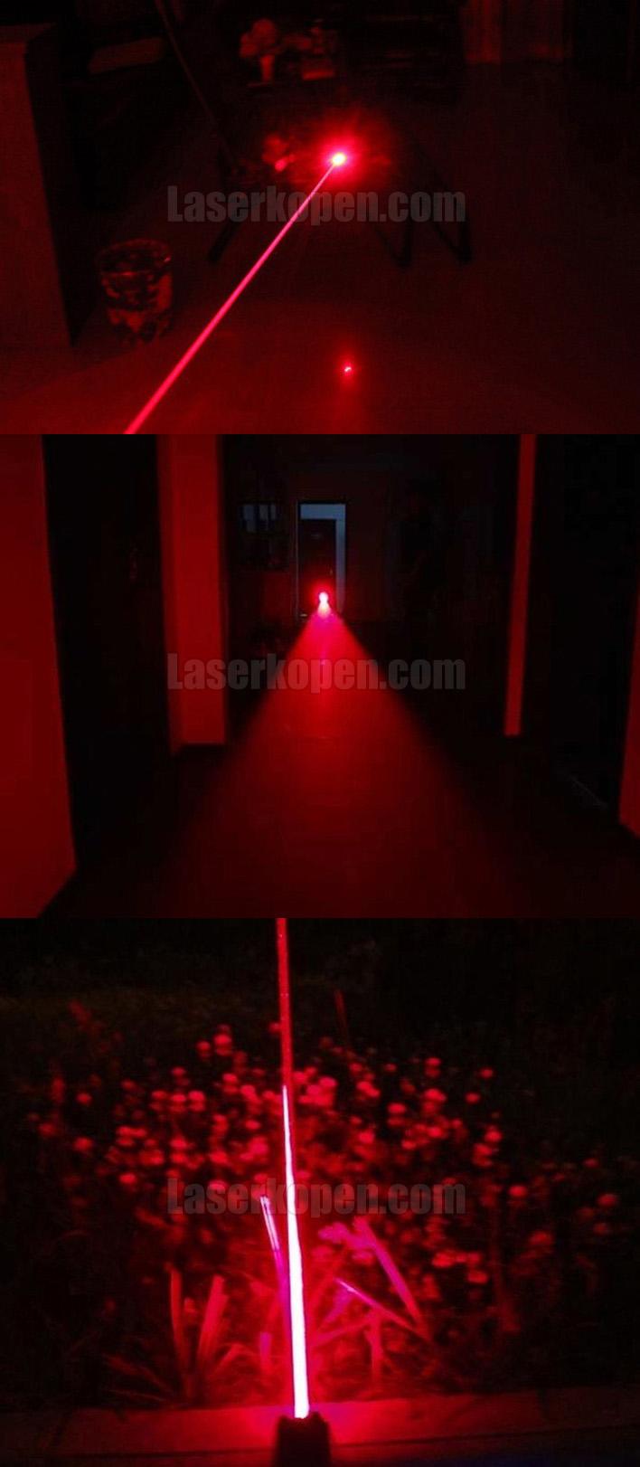 laserpen 1000mW